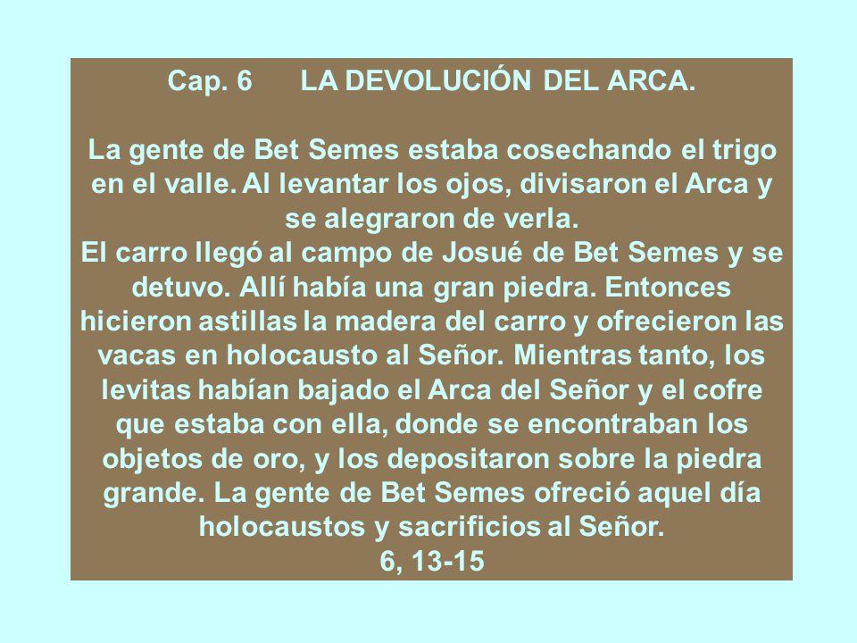 Cap.5 LOS ESTRAGOS CAUSADOS POR EL ARCA.