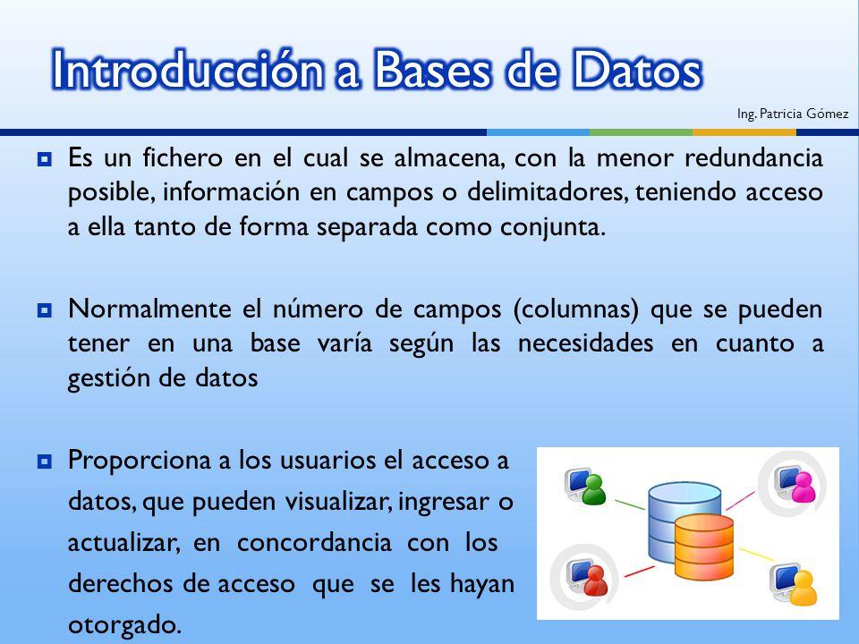 Es un fichero en el cual se almacena, con la menor redundancia posible, información en campos o delimitadores, teniendo acceso a ella tanto de forma s