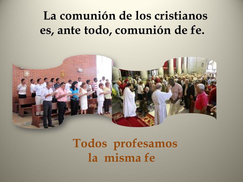 La comunión de los cristianos es, ante todo, comunión de fe. Todos profesamos la misma fe