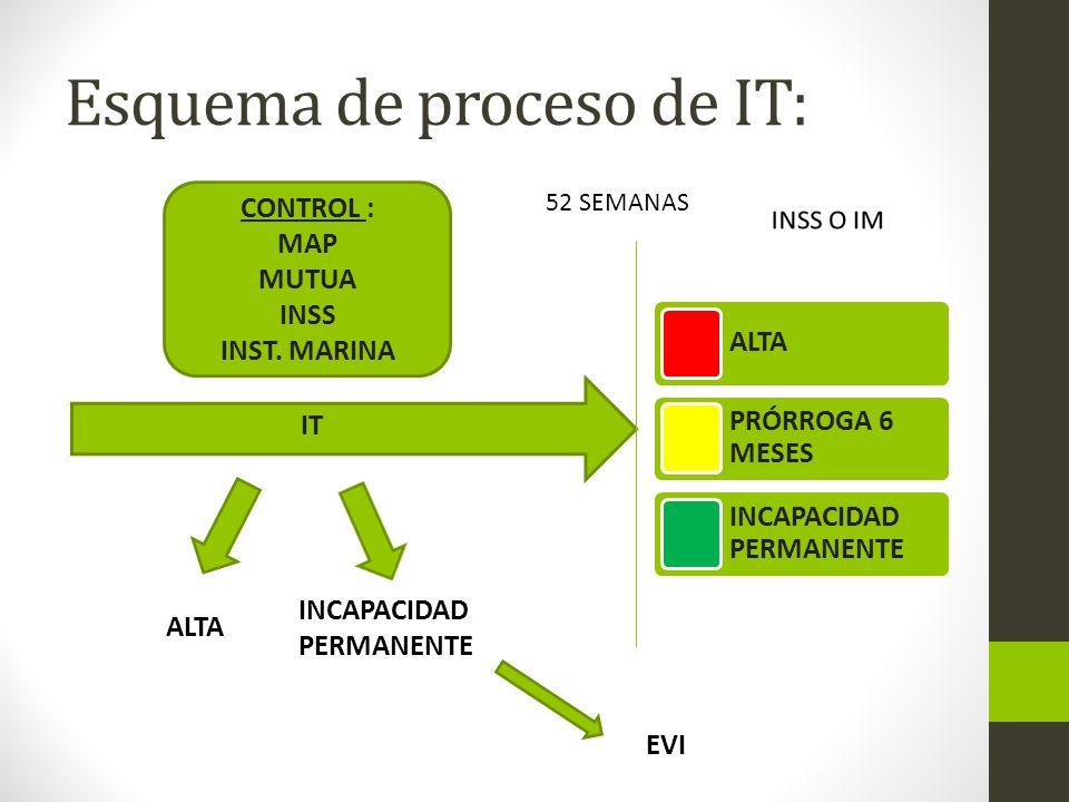 Esquema de proceso de IT: IT CONTROL : MAP MUTUA INSS INST.