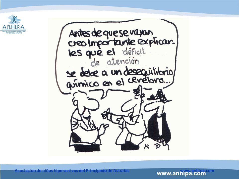 www.anhipa.com Asociación de niños hiperactivos del Principado de Asturiaswww.anhipa.com