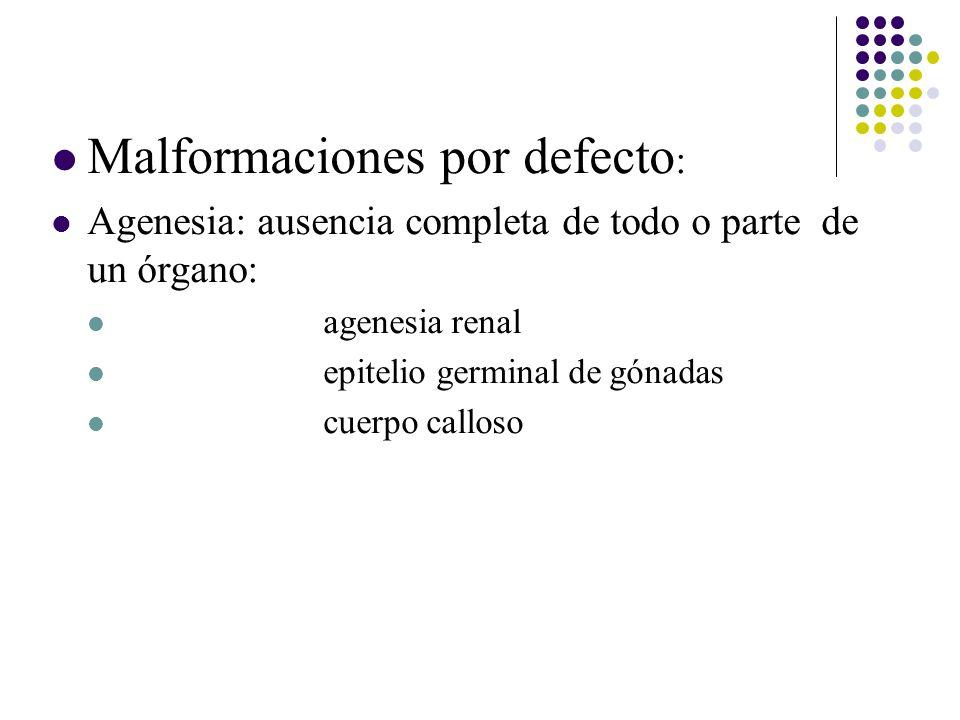 Malformaciones por defecto : Agenesia: ausencia completa de todo o parte de un órgano: agenesia renal epitelio germinal de gónadas cuerpo calloso