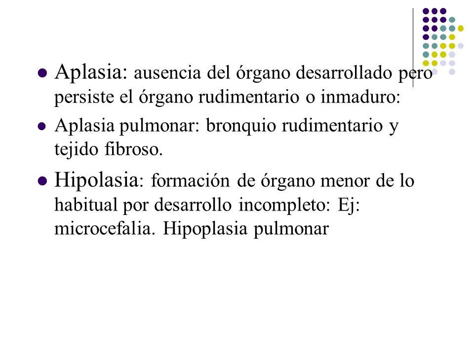 Aplasia: ausencia del órgano desarrollado pero persiste el órgano rudimentario o inmaduro: Aplasia pulmonar: bronquio rudimentario y tejido fibroso.
