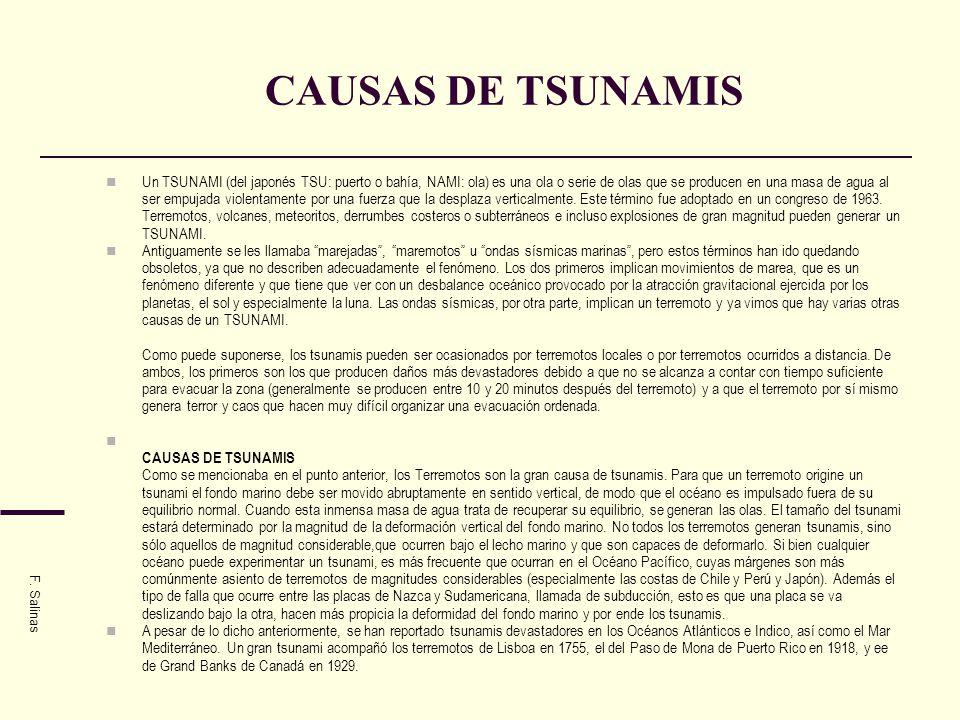 CAUSAS DE TSUNAMIS Un TSUNAMI (del japonés TSU: puerto o bahía, NAMI: ola) es una ola o serie de olas que se producen en una masa de agua al ser empuj