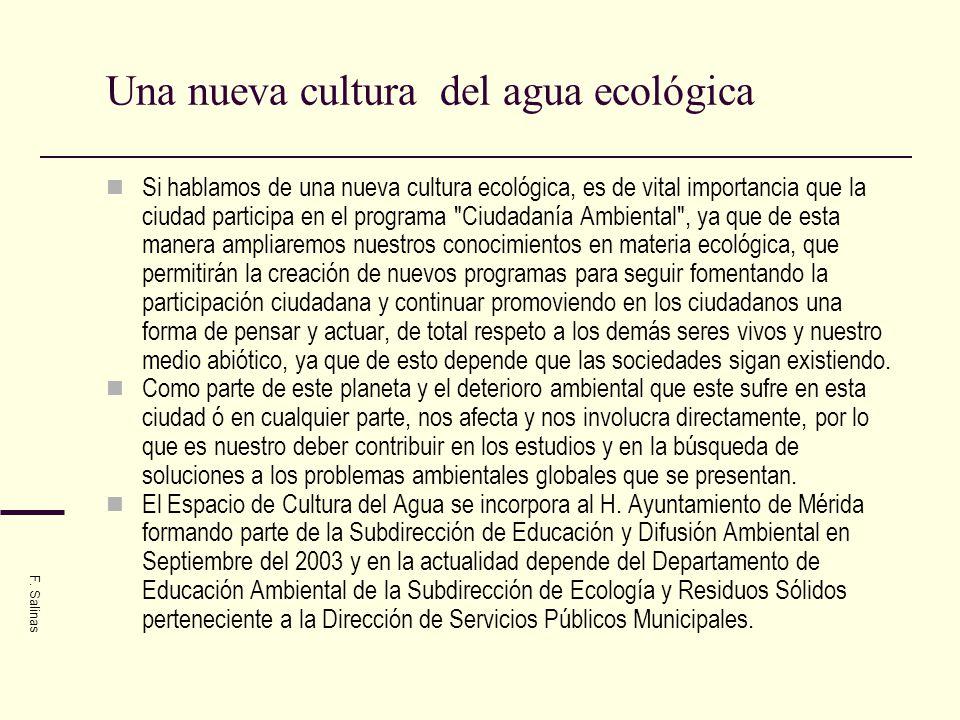 Ciclo del agua F. Salinas