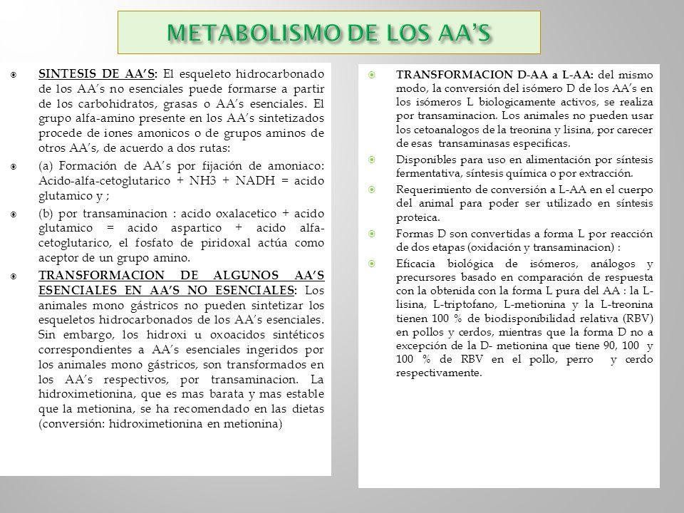 SINTESIS DE AAS: El esqueleto hidrocarbonado de los AAs no esenciales puede formarse a partir de los carbohidratos, grasas o AAs esenciales. El grupo