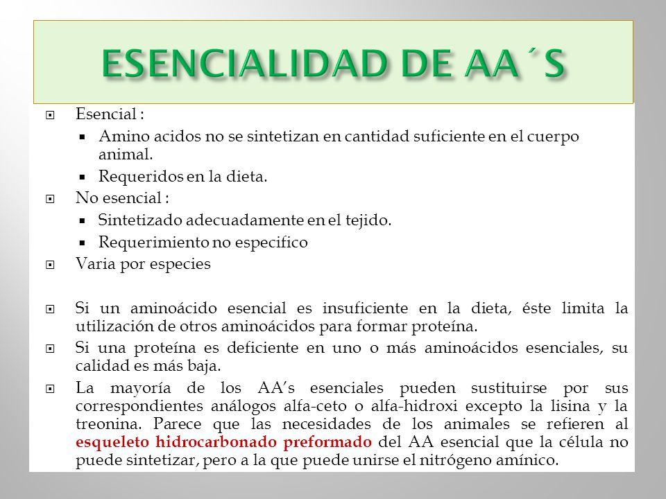 Esencial : Amino acidos no se sintetizan en cantidad suficiente en el cuerpo animal. Requeridos en la dieta. No esencial : Sintetizado adecuadamente e