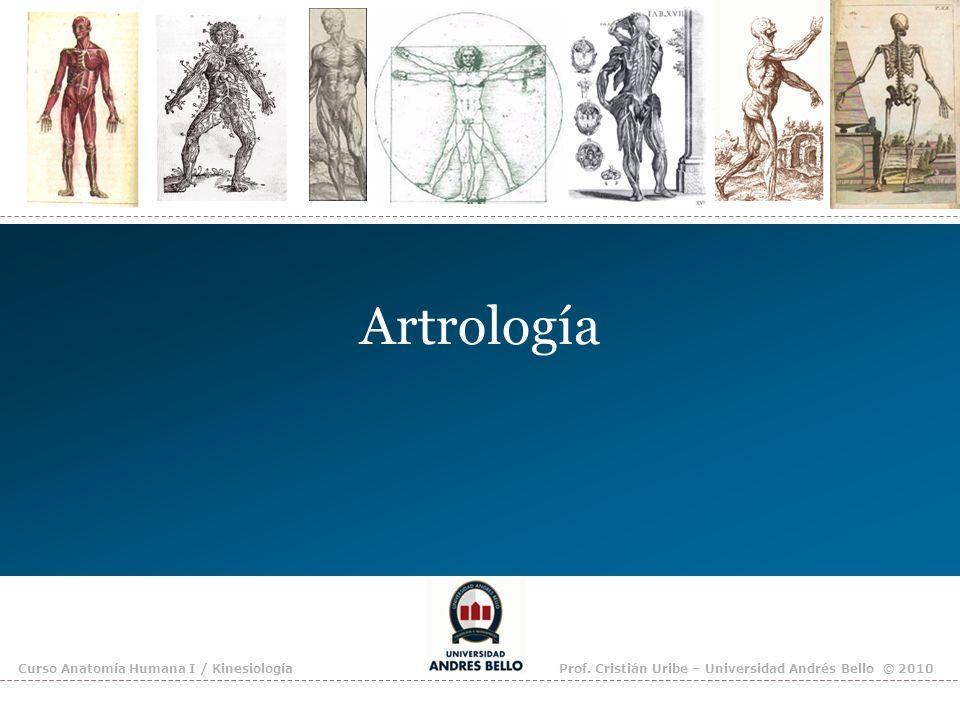 Artrología Curso Anatomía Humana I / KinesiologíaProf. Cristián Uribe – Universidad Andrés Bello © 2010