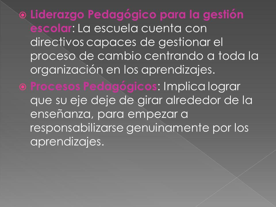 Liderazgo Pedagógico para la gestión escolar : La escuela cuenta con directivos capaces de gestionar el proceso de cambio centrando a toda la organización en los aprendizajes.