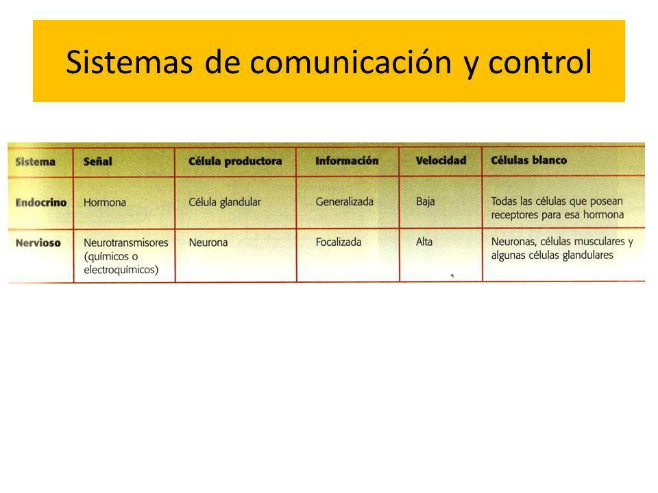 Sistemas de comunicación y control