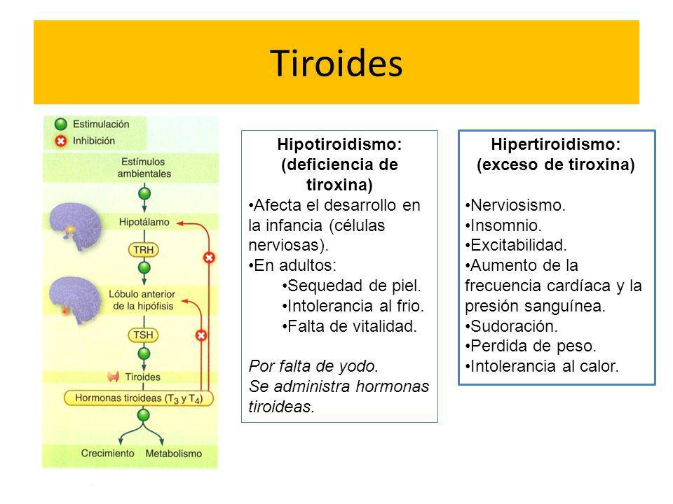 Tiroides Hipotiroidismo: (deficiencia de tiroxina) Afecta el desarrollo en la infancia (células nerviosas). En adultos: Sequedad de piel. Intolerancia