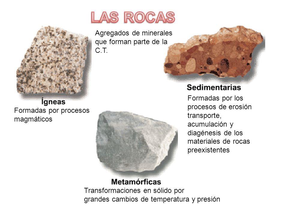 Formadas por procesos magmáticos Transformaciones en sólido por grandes cambios de temperatura y presión Formadas por los procesos de erosión transporte, acumulación y diagénesis de los materiales de rocas preexistentes Agregados de minerales que forman parte de la C.T.