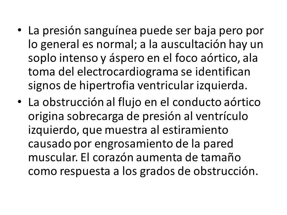 DIAGNOSTICO DETERIORO DE LA MOVILIDAD FISICA.R/C: -Intolerancia ala actividad física.