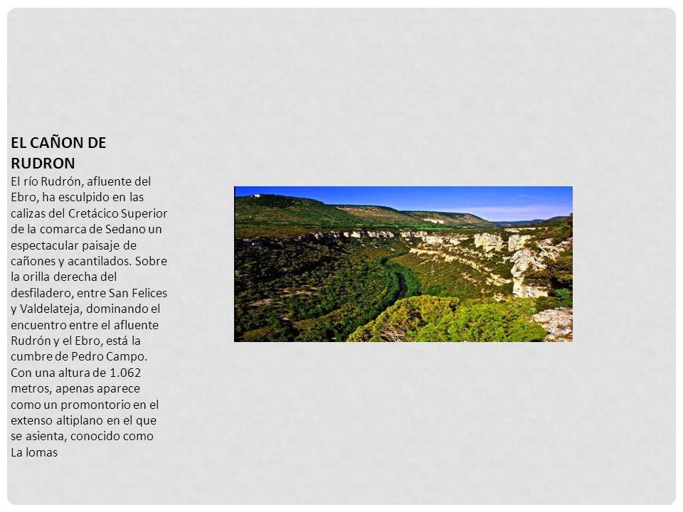 EL CAÑON DE RUDRON El río Rudrón, afluente del Ebro, ha esculpido en las calizas del Cretácico Superior de la comarca de Sedano un espectacular paisaje de cañones y acantilados.