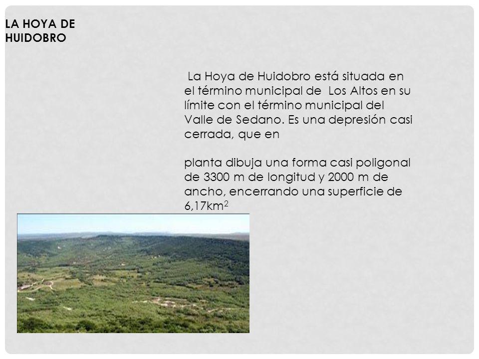 La Hoya de Huidobro está situada en el término municipal de Los Altos en su límite con el término municipal del Valle de Sedano.