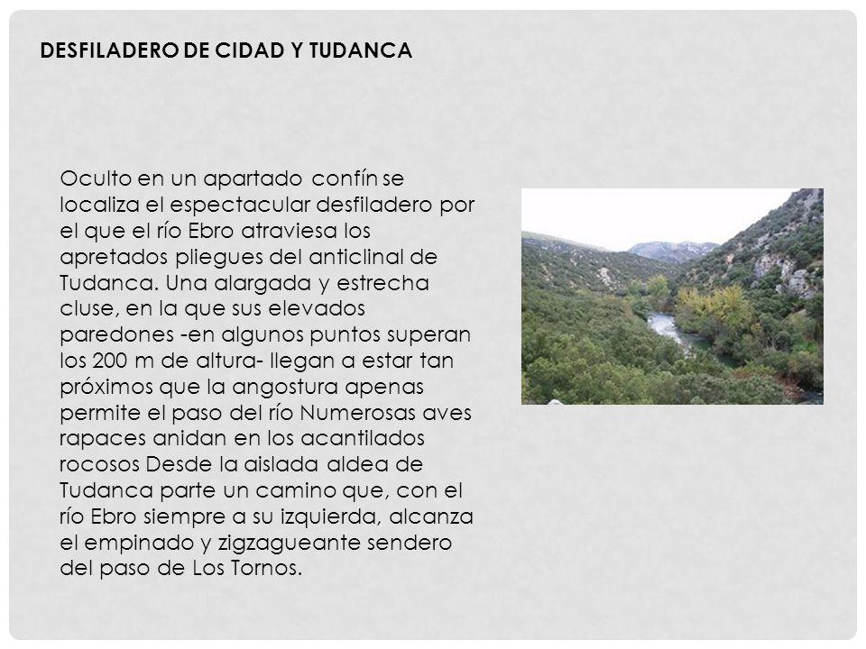 Oculto en un apartado confín se localiza el espectacular desfiladero por el que el río Ebro atraviesa los apretados pliegues del anticlinal de Tudanca.
