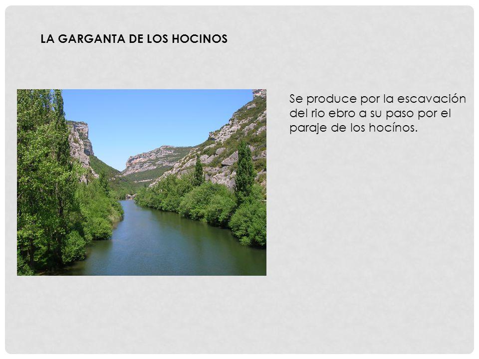 LA GARGANTA DE LOS HOCINOS Se produce por la escavación del rio ebro a su paso por el paraje de los hocínos.