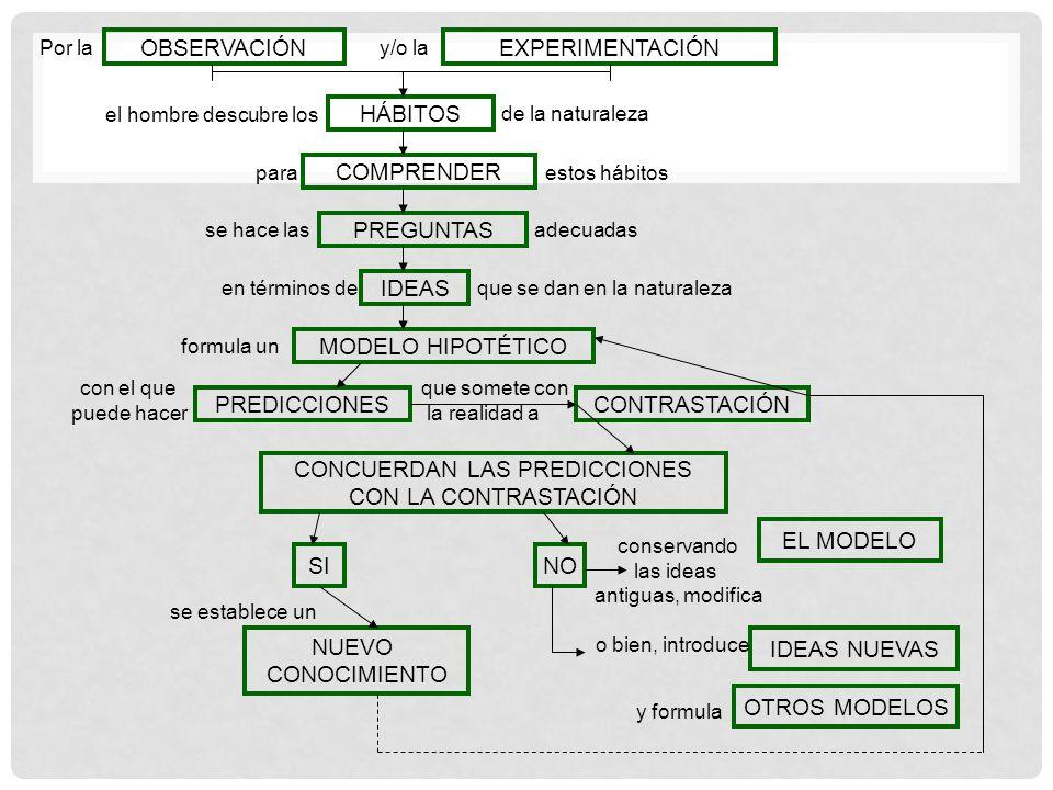 OBSERVACIÓNEXPERIMENTACIÓN HÁBITOS COMPRENDER PREGUNTAS IDEAS MODELO HIPOTÉTICO PREDICCIONESCONTRASTACIÓN CONCUERDAN LAS PREDICCIONES CON LA CONTRASTA