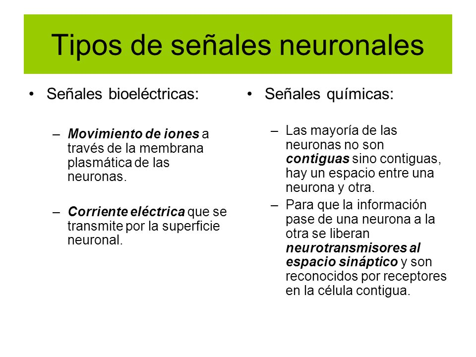 Tipos de señales neuronales Señales bioeléctricas: –Movimiento de iones a través de la membrana plasmática de las neuronas. –Corriente eléctrica que s