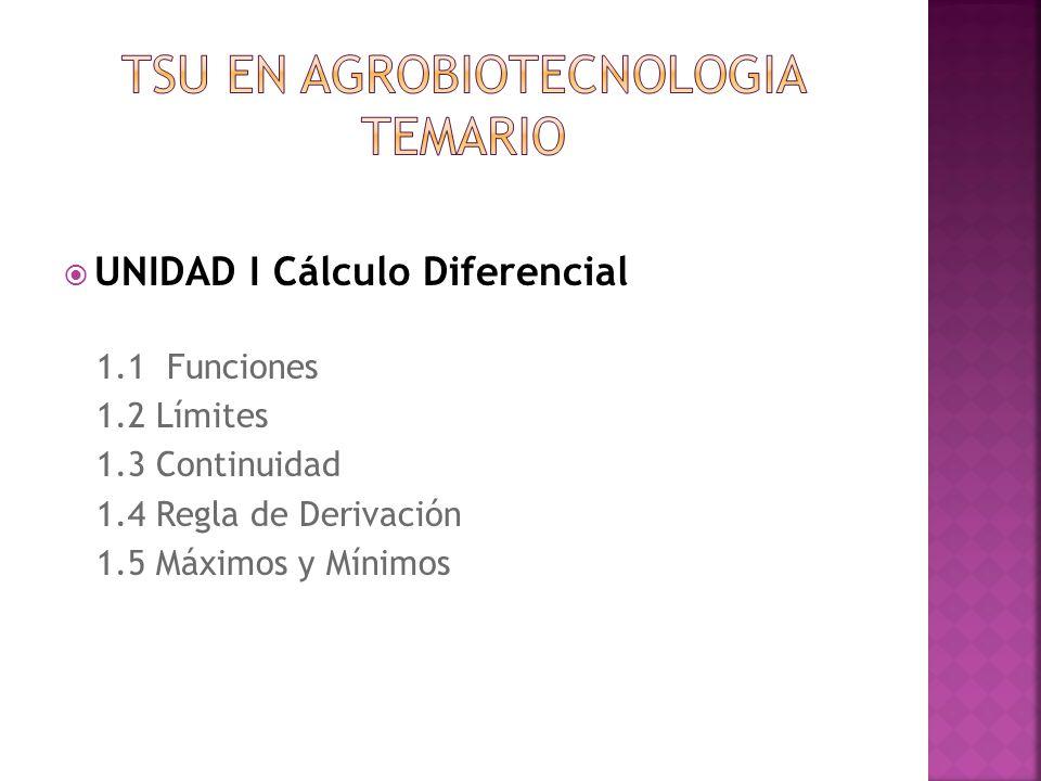 UNIDAD I Cálculo Diferencial 1.1 Funciones 1.2 Límites 1.3 Continuidad 1.4 Regla de Derivación 1.5 Máximos y Mínimos
