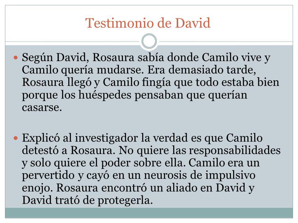 Testimonio de David Según David, Rosaura sabía donde Camilo vive y Camilo quería mudarse. Era demasiado tarde, Rosaura llegó y Camilo fingía que todo