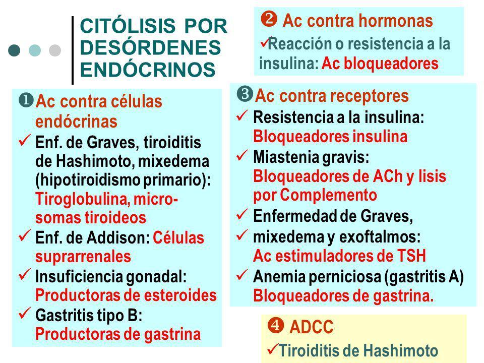 CITÓLISIS POR DESÓRDENES ENDÓCRINOS Ac contra células endócrinas Enf. de Graves, tiroiditis de Hashimoto, mixedema (hipotiroidismo primario): Tiroglob