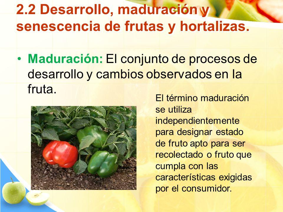 2.2 Desarrollo, maduración y senescencia de frutas y hortalizas. Maduración: El conjunto de procesos de desarrollo y cambios observados en la fruta. E