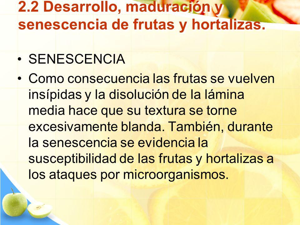 2.2 Desarrollo, maduración y senescencia de frutas y hortalizas. SENESCENCIA Como consecuencia las frutas se vuelven insípidas y la disolución de la l
