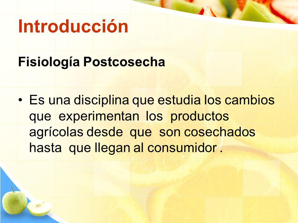 Introducción Fisiología Postcosecha Es una disciplina que estudia los cambios que experimentan los productos agrícolas desde que son cosechados hasta
