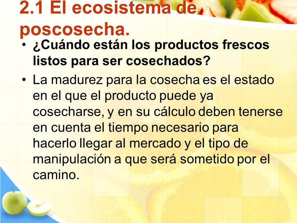 2.1 El ecosistema de poscosecha. ¿Cuándo están los productos frescos listos para ser cosechados? La madurez para la cosecha es el estado en el que el