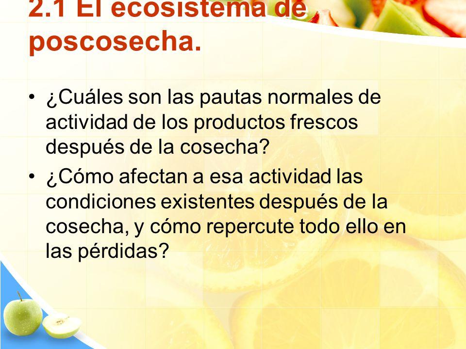 2.1 El ecosistema de poscosecha. ¿Cuáles son las pautas normales de actividad de los productos frescos después de la cosecha? ¿Cómo afectan a esa acti