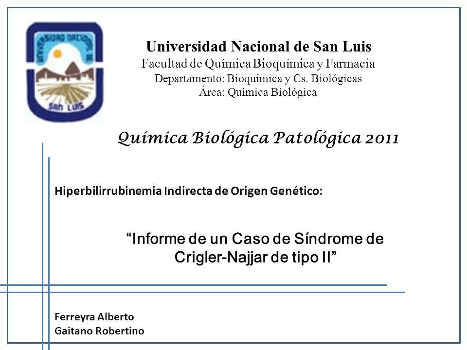 Universidad Nacional de San Luis Facultad de Química Bioquímica y Farmacia Departamento: Bioquímica y Cs. Biológicas Área: Química Biológica Química B