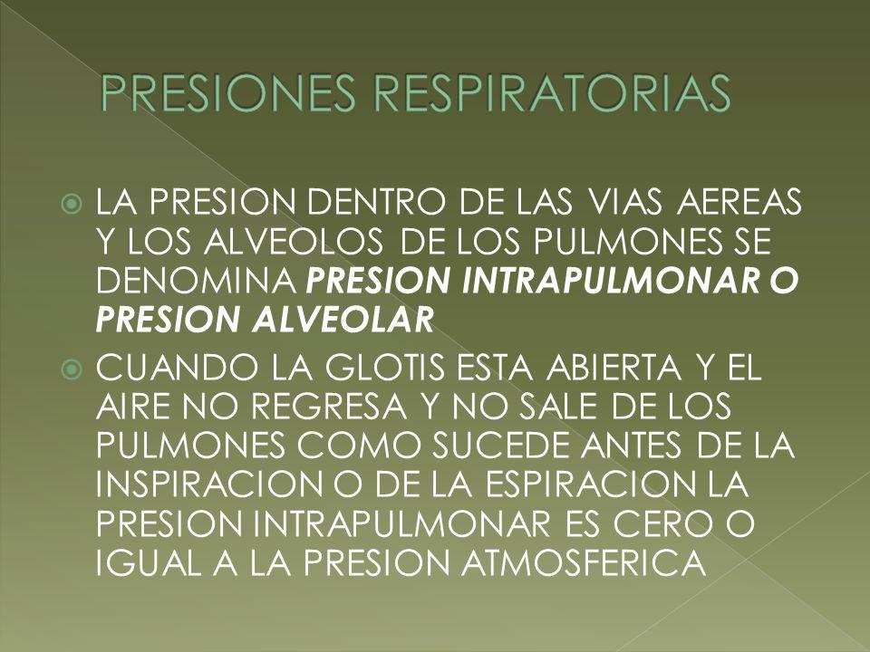 LA PRESION DENTRO DE LAS VIAS AEREAS Y LOS ALVEOLOS DE LOS PULMONES SE DENOMINA PRESION INTRAPULMONAR O PRESION ALVEOLAR CUANDO LA GLOTIS ESTA ABIERTA