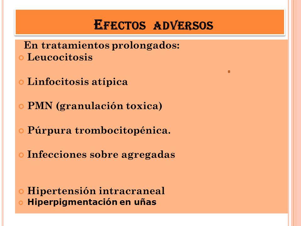 E FECTOS ADVERSOS En tratamientos prolongados: Leucocitosis Linfocitosis atípica PMN (granulación toxica) Púrpura trombocitopénica. Infecciones sobre