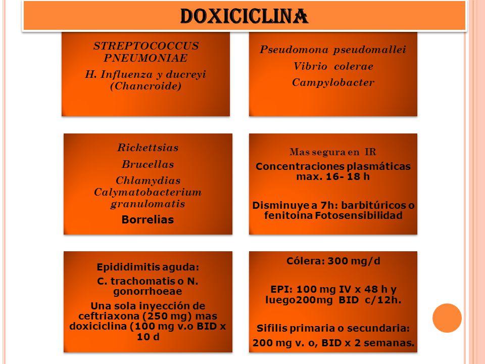 STREPTOCOCCUS PNEUMONIAE H. Influenza y ducreyi (Chancroide) Pseudomona pseudomallei Vibrio colerae Campylobacter Rickettsias Brucellas Chlamydias Cal