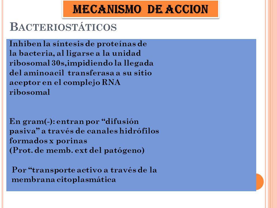 E FECTOS ADVERSOS En tratamientos prolongados: Leucocitosis Linfocitosis atípica PMN (granulación toxica) Púrpura trombocitopénica.