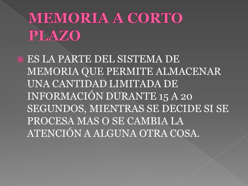 ES LA PARTE DEL SISTEMA DE MEMORIA QUE PERMITE ALMACENAR UNA CANTIDAD LIMITADA DE INFORMACIÓN DURANTE 15 A 20 SEGUNDOS, MIENTRAS SE DECIDE SI SE PROCESA MAS O SE CAMBIA LA ATENCIÓN A ALGUNA OTRA COSA.
