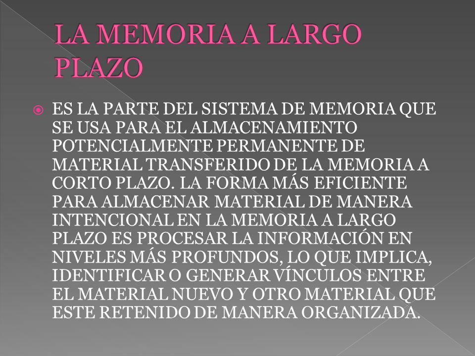 ES LA PARTE DEL SISTEMA DE MEMORIA QUE SE USA PARA EL ALMACENAMIENTO POTENCIALMENTE PERMANENTE DE MATERIAL TRANSFERIDO DE LA MEMORIA A CORTO PLAZO. LA