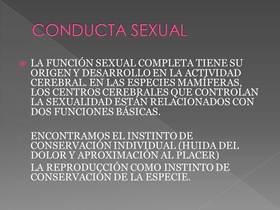 LA FUNCIÓN SEXUAL COMPLETA TIENE SU ORIGEN Y DESARROLLO EN LA ACTIVIDAD CEREBRAL. EN LAS ESPECIES MAMÍFERAS, LOS CENTROS CEREBRALES QUE CONTROLAN LA S