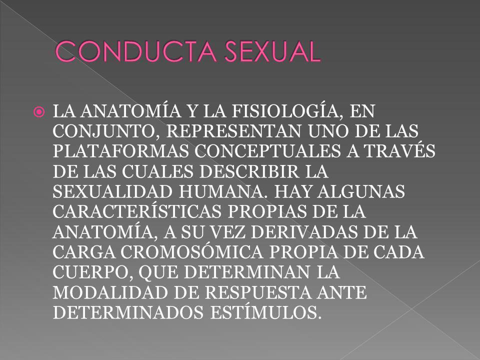 LA ANATOMÍA Y LA FISIOLOGÍA, EN CONJUNTO, REPRESENTAN UNO DE LAS PLATAFORMAS CONCEPTUALES A TRAVÉS DE LAS CUALES DESCRIBIR LA SEXUALIDAD HUMANA.