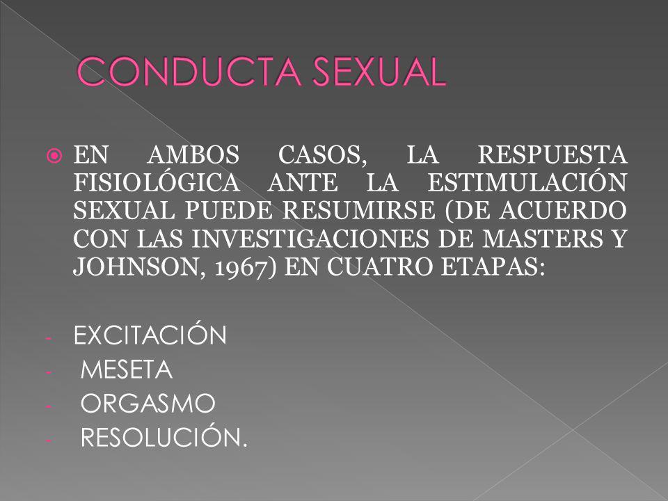 EN AMBOS CASOS, LA RESPUESTA FISIOLÓGICA ANTE LA ESTIMULACIÓN SEXUAL PUEDE RESUMIRSE (DE ACUERDO CON LAS INVESTIGACIONES DE MASTERS Y JOHNSON, 1967) EN CUATRO ETAPAS: - EXCITACIÓN - MESETA - ORGASMO - RESOLUCIÓN.
