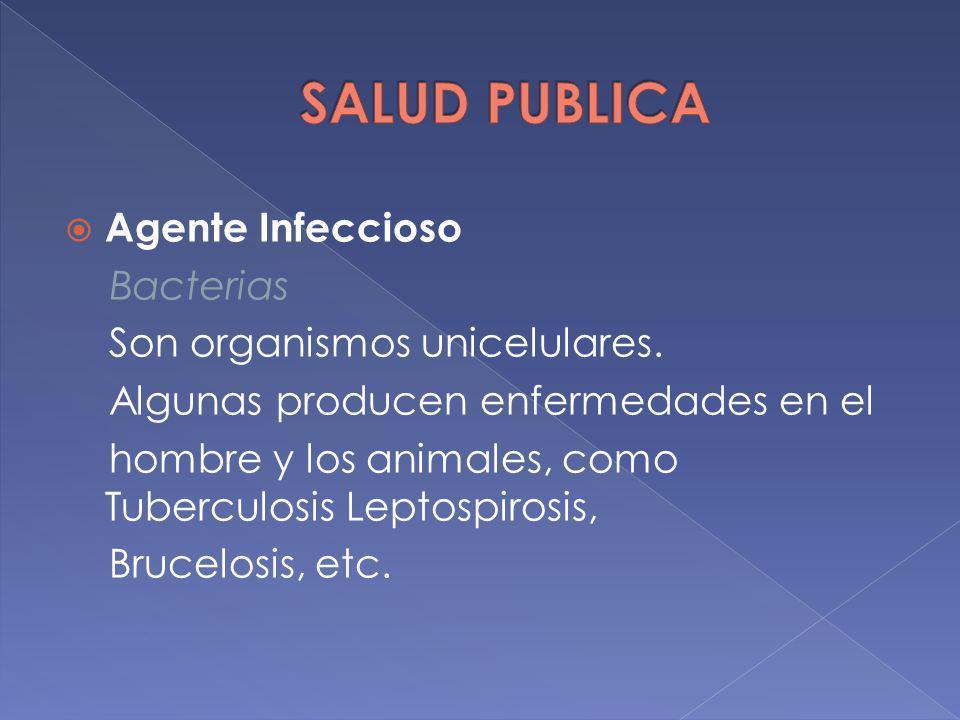 Agente Infeccioso Bacterias Son organismos unicelulares. Algunas producen enfermedades en el hombre y los animales, como Tuberculosis Leptospirosis, B