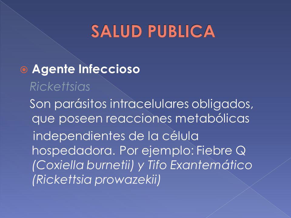 Agente Infeccioso Rickettsias Son parásitos intracelulares obligados, que poseen reacciones metabólicas independientes de la célula hospedadora. Por e