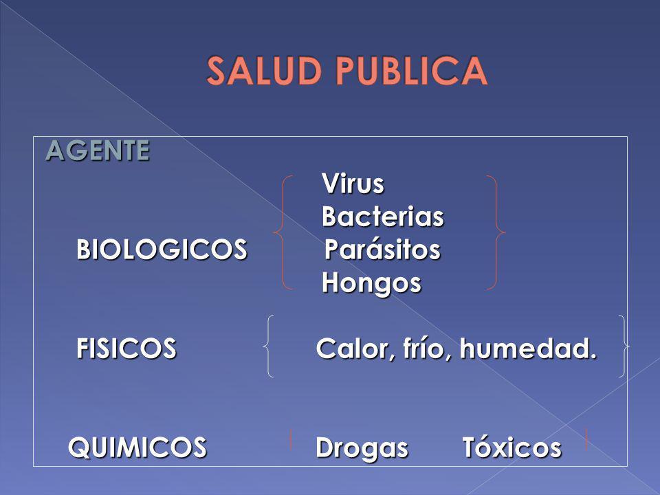 AGENTE Virus Virus Bacterias Bacterias BIOLOGICOS Parásitos BIOLOGICOS Parásitos Hongos Hongos FISICOS Calor, frío, humedad. FISICOS Calor, frío, hume