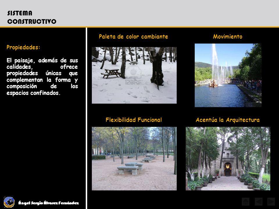 Ángel Sergio Álvarez Fernández SISTEMA CONSTRUCTIVO Propiedades: El paisaje, además de sus calidades, ofrece propiedades únicas que complementan la fo