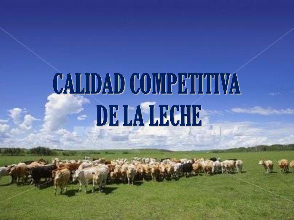 CALIDAD COMPETITIVA DE LA LECHE