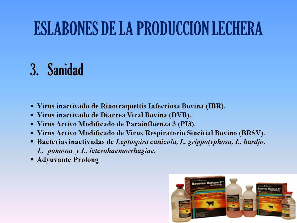 ESLABONES DE LA PRODUCCION LECHERA 3.Sanidad Virus inactivado de Rinotraqueítis Infecciosa Bovina (IBR). Virus inactivado de Diarrea Viral Bovina (DVB