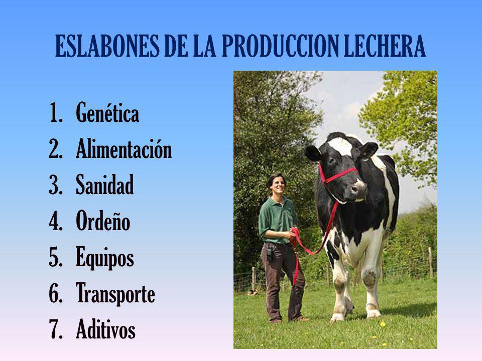 ESLABONES DE LA PRODUCCION LECHERA 1.Genética 2.Alimentación 3.Sanidad 4.Ordeño 5.Equipos 6.Transporte 7.Aditivos