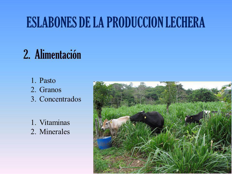 ESLABONES DE LA PRODUCCION LECHERA 2.Alimentación 1.Pasto 2.Granos 3.Concentrados 1.Vitaminas 2.Minerales