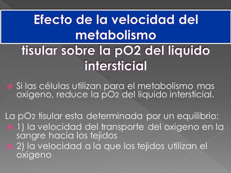 Si las células utilizan para el metabolismo mas oxigeno, reduce la pO 2 del liquido intersticial.